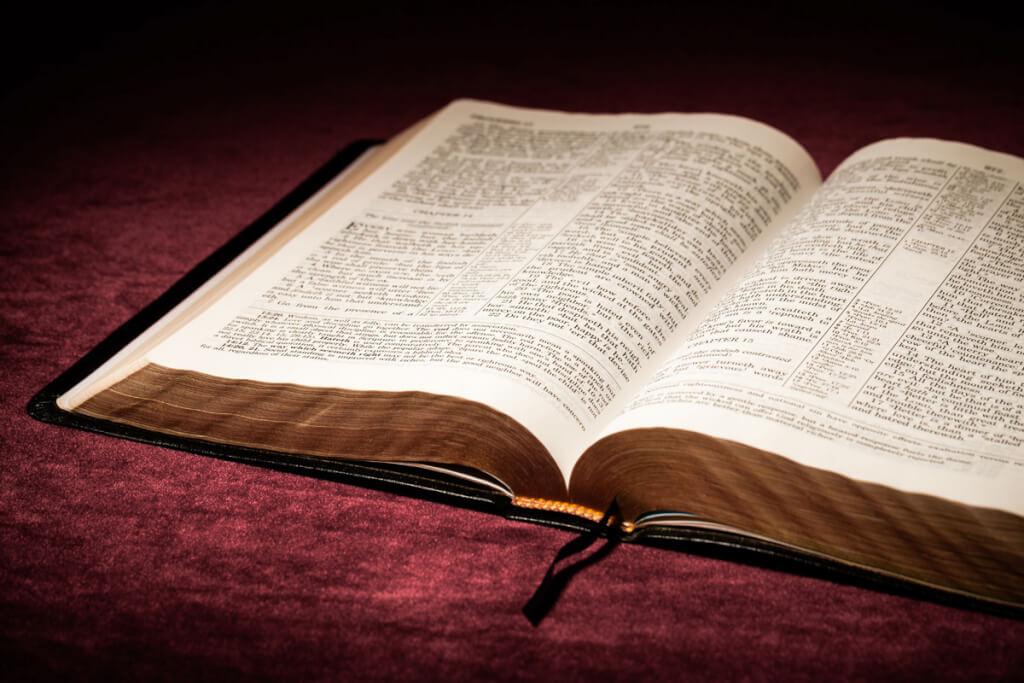 El fundamentalismo y la cultura de la intolerancia.  por  Miguel Pastorino